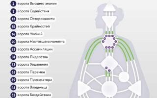 Ворота Четверти Цивилизации — практическая реализация ваших идей