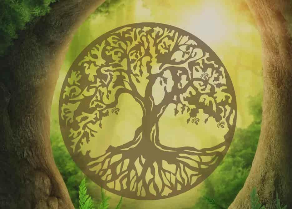 Гороскоп друидов, или какое вы дерево