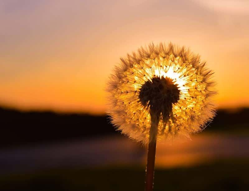 Солнцезажигающие действия, или как усилить своё Солнце